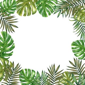 手は、白い背景の水彩画熱帯正方形フレームを描画しました。