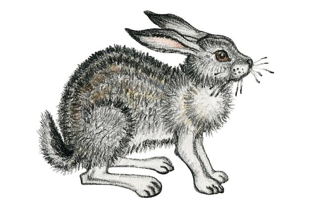 Рисованной диких животных сидит заяц иллюстрации на белом фоне пастель акварель