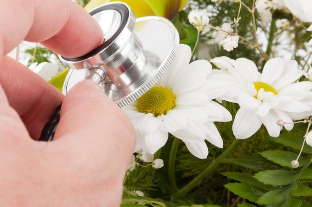 Рука, исследующая цветок с помощью стетоскопа