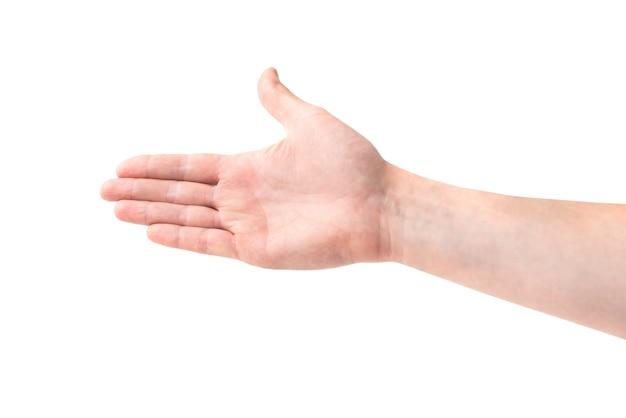 白い背景で隔離の握手のための手