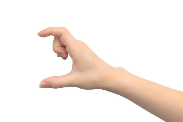 흰색 배경에 격리된 크기를 보여주는 손 제스처, 젊은 여성의 손 클로즈업