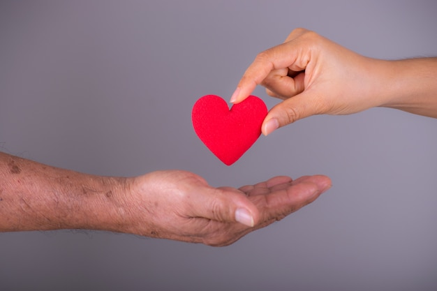 A hand gives a red heart to a hand  senior elder. world heart day.