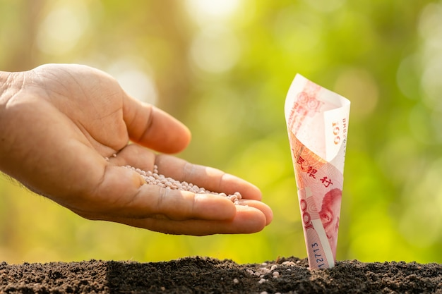 緑の自然の土壌で成長している中国の紙幣(100元)に肥料を与える手は、背景をぼかします。ビジネス成長コンセプト