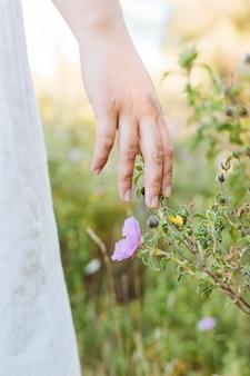 自然の中の花を滑る手