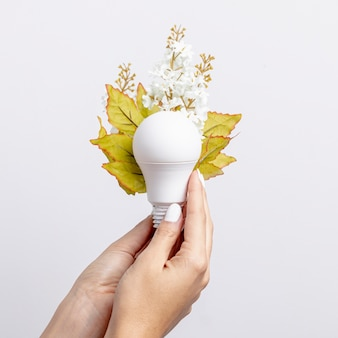 Hand held light bulb with flowers and leaves