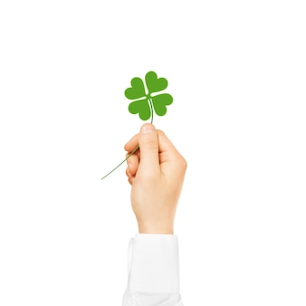 Hand hold clover symbol isolated