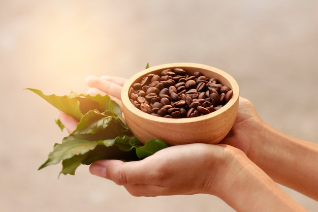 Hand hold coffee bean for healthy drinking