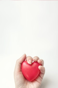 Hand hold red heart. csr concept, world heart day, world health day, national organ donor day.