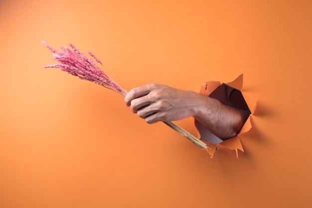 오렌지 배경에 말린 된 꽃의 꽃다발을 들고 손