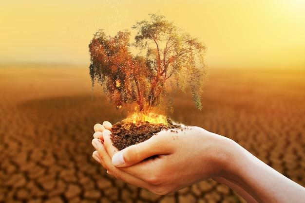 Рука, держащая горящее дерево с сухой рекой на фоне