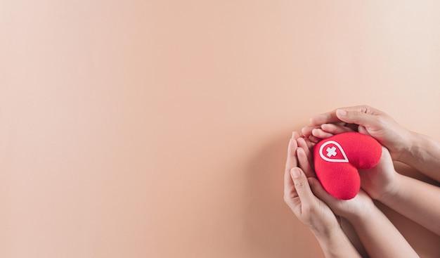 Рука держит красное сердце ручной работы знак или символ донорства крови