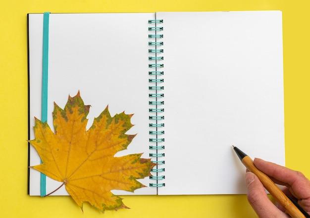 黄色の背景に黄色のカエデの葉が付いている開いた空白のノートにペンを持っている手。ビジネスコンセプト。学校に戻るコンセプト