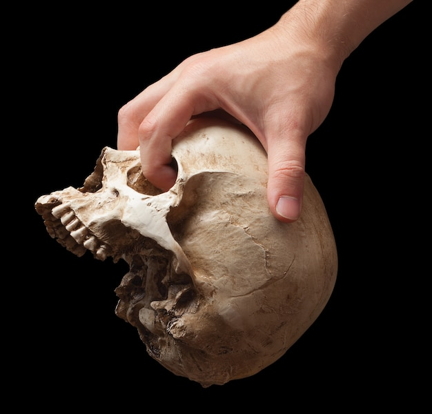 Рука, держащая череп изолирована