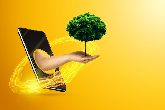 Рука держит дерево через смартфон