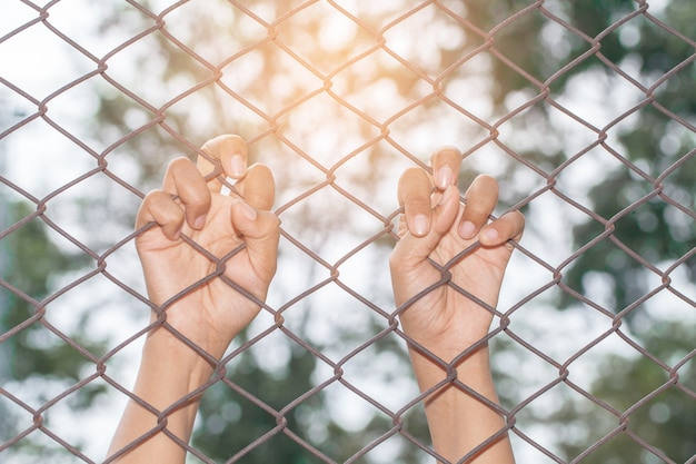 Hand holding on chain link fence in the morning