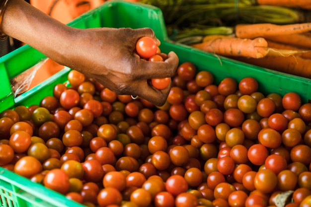 Hand holding cherry tomato over plastic crate in market
