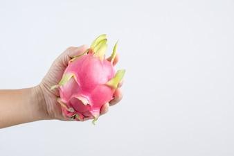 Hand holding dragonfruit or pitahaya fruit