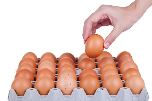 흰색 바탕에 손을 잡고 계란입니다.
