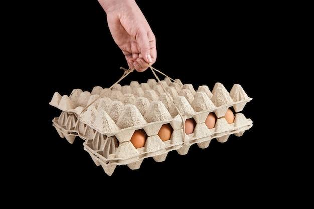 블랙에 고립 된 닭고기 달걀과 계란 트레이를 들고 손