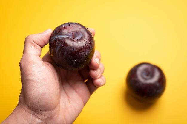 Hand holding fresh plum on plain color background