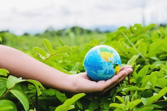 Hand holding globe on grass in nature