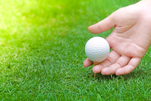 Hand holding golf ball on green grass with golf ball close-up in soft focus at sunlight. sport playground for golf club concept