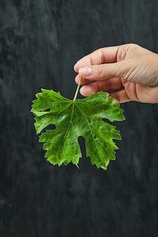 Hand holding a grape leaf on dark surface