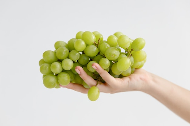 Hand holding green grape. isolated on the white background. female hand holding a bunch of grapes, neutral background