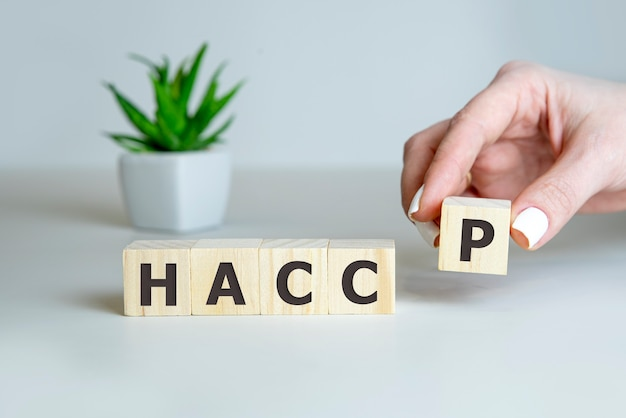 Рука haccp на деревянных кубиках