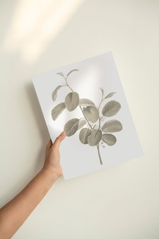 Hand holding a leaf print on poster paper