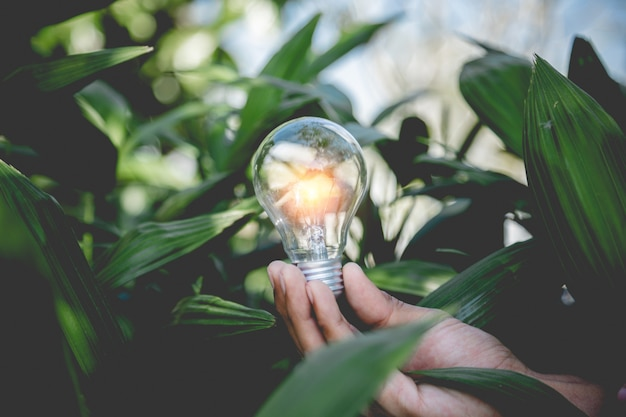 Hand holding light bulb, energy sources for renewable