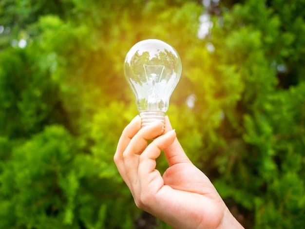 ぼやけた木の背景に電球を持っている手