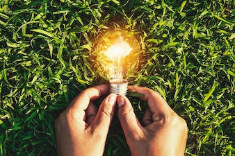 Hand holding light bulb on grass. eco concept power energy in nature