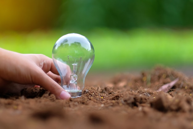 Hand holding light bulb on soil with green background.