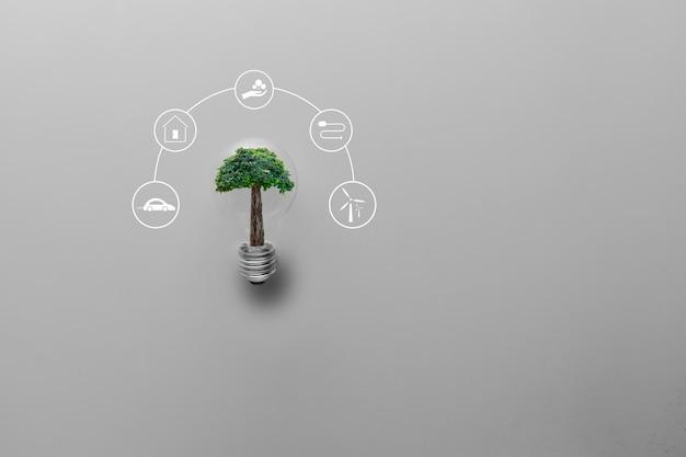 再生可能、太陽電池エネルギー、持続可能な開発のためのアイコンエネルギー源と灰色の背景に大きな木と電球を持っている手。エコロジーと環境の概念。