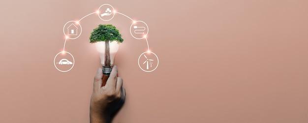 再生可能、太陽電池エネルギー、持続可能な開発のためのアイコンエネルギー源とピンクの背景に大きな木と電球を持っている手。エコロジーと環境の概念。