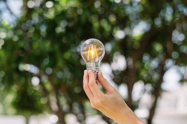 Рука лампочку с зеленым фоном. идея солнечной энергии в природе концепция