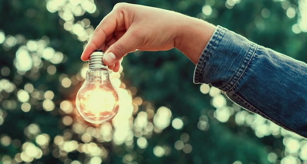 Hand holding lightbulb with sunlight background in nature. concept save energy power