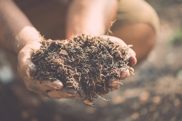 Hand holding mixed soil for plant in the garden