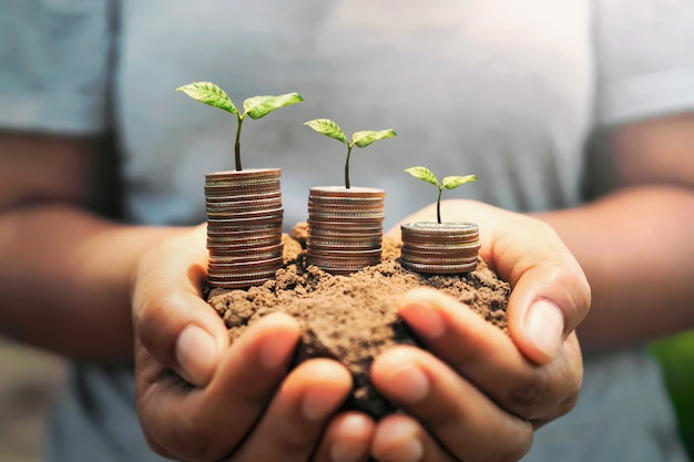 Hand holding money with plant growing on soil.
