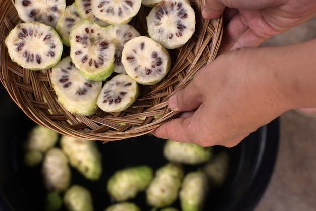 Hand holding noni slice basket and noni fruit in basin..jpg