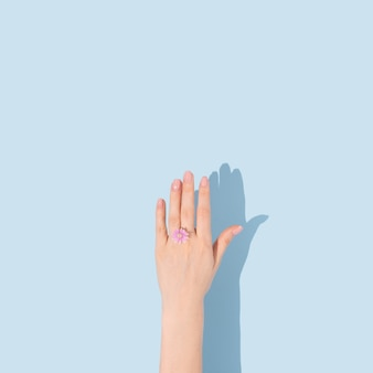 반지의 형태로 하나의 작은 꽃을 들고 손 최소한의 개념적 평면 누워 아이디어 복사 공간