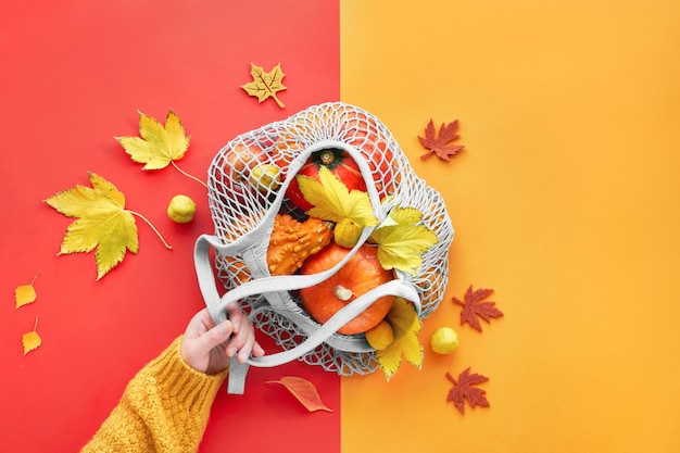 Hand holding orange pumpkins in mesh bag, autumn split paper flat lay in yellow and coral color