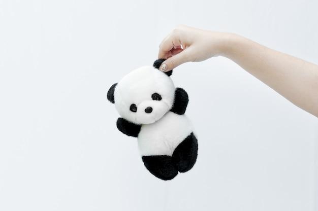 パンダ人形、目の黒い縁、白い背景の上のパンダのおもちゃを持っている手