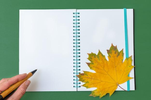 緑の背景に黄色のカエデの葉と開いた空白のノートにペンを持っている手。ビジネスコンセプト。学校に戻るコンセプト