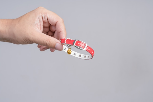 Hand holding pet collar with bell