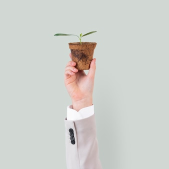 Hand holding plant save the environment campaign