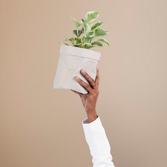 La pianta della mano che tiene la campagna salva l'ambiente