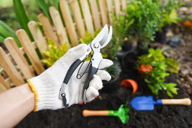 Hand holding pruning shears in the garden agriculture