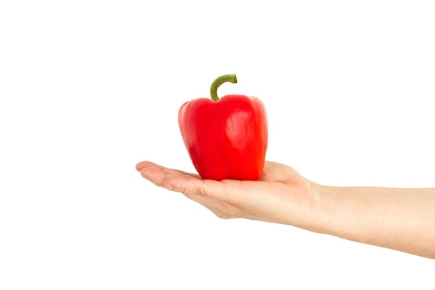 Hand holding a red bell pepper